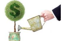 Bảo đảm của nhà nước với hoạt động đầu tư