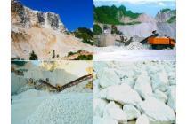 Chuyển nhượng quyền khai thác khoáng sản