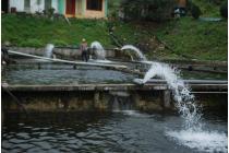 Những trường hợp miễn phí bảo vệ môi trường đối với nước thải